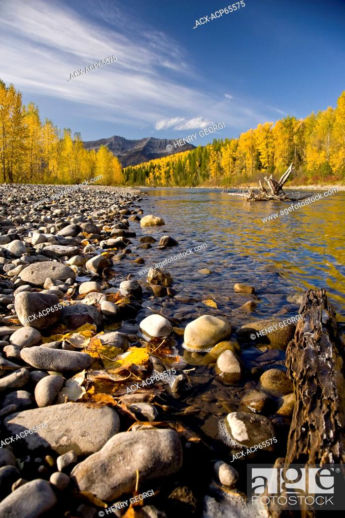 Stock Photo: Elk River and Lizard Range in autumn, Fernie, BC, Canada.