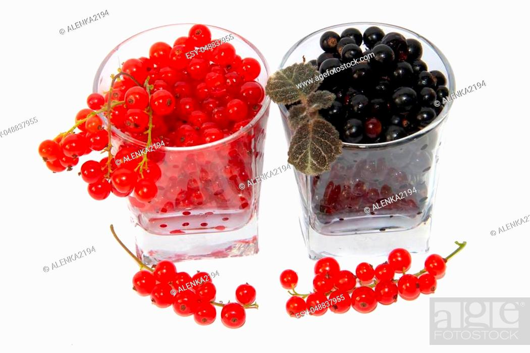 Stock Photo: Red and black currants isolated on white background. Berries on a white background. Red berries. Black berries.