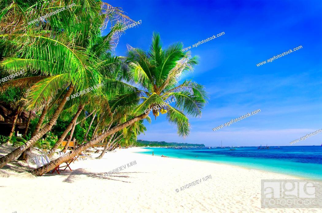 Stock Photo: perfect tropical beach.