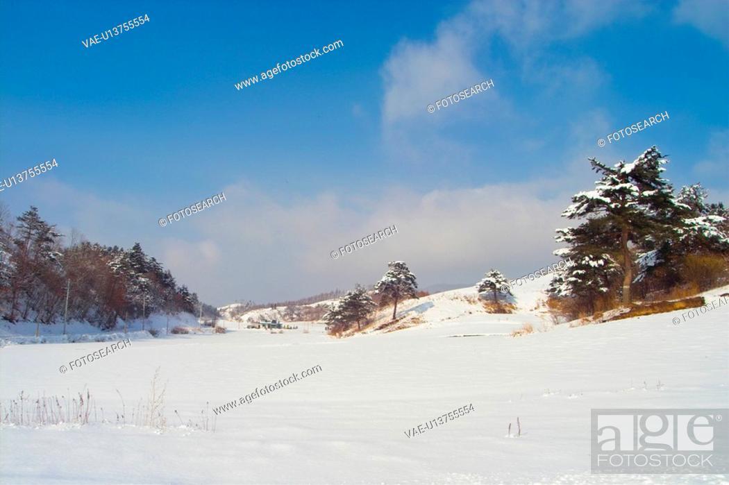 Stock Photo: background, snow, snowfield, snowy, winter, landscape, tree.