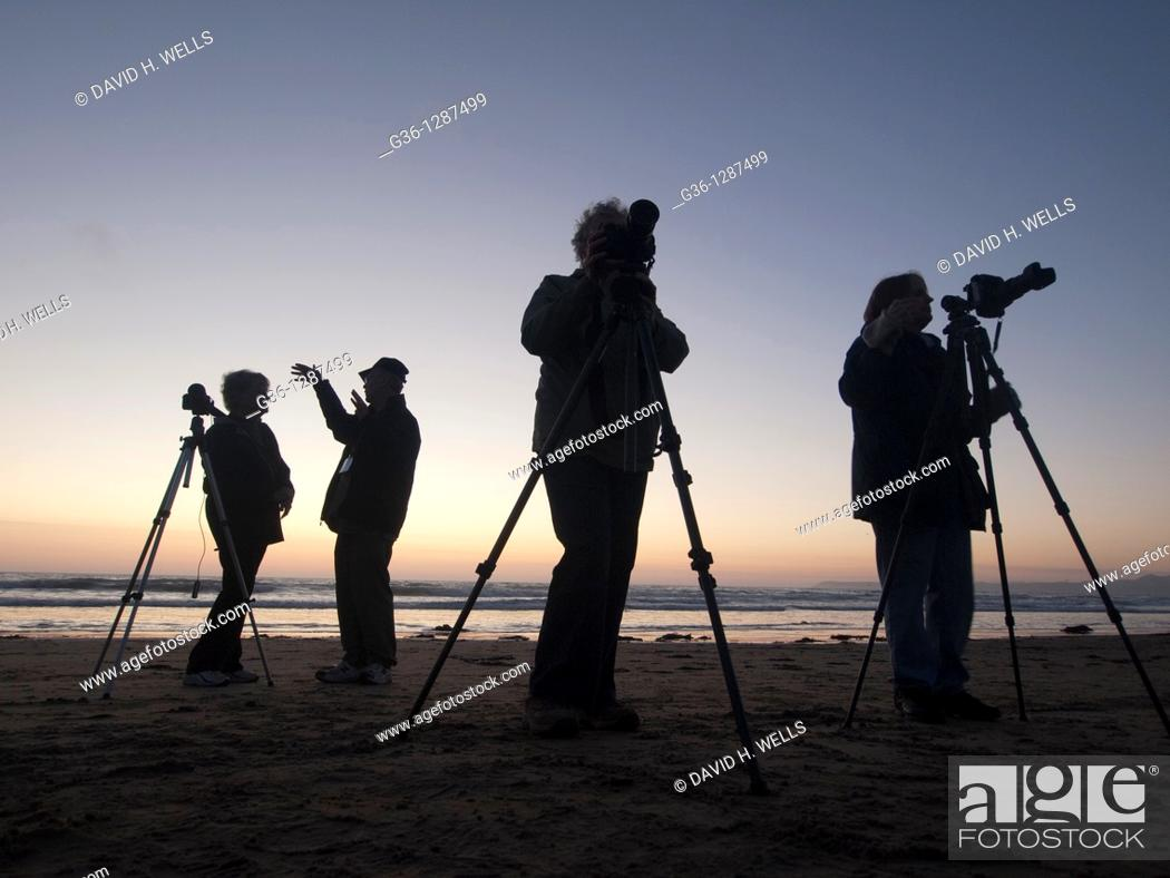 Stock Photo: Photographers at twilight, Morro Bay, California, United States America.