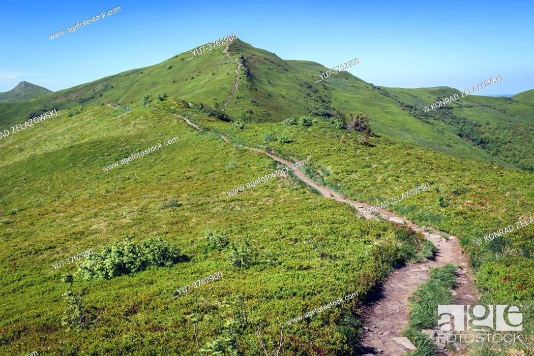 Stock Photo: Tourist trail to Halicz peak in the Bieszczady Mountains in southern Poland.