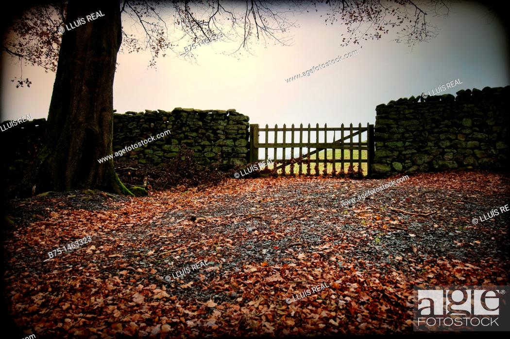 Stock Photo: Fence.