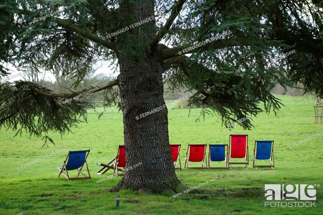 Stock Photo: Basildon Park. Berkshire. England.