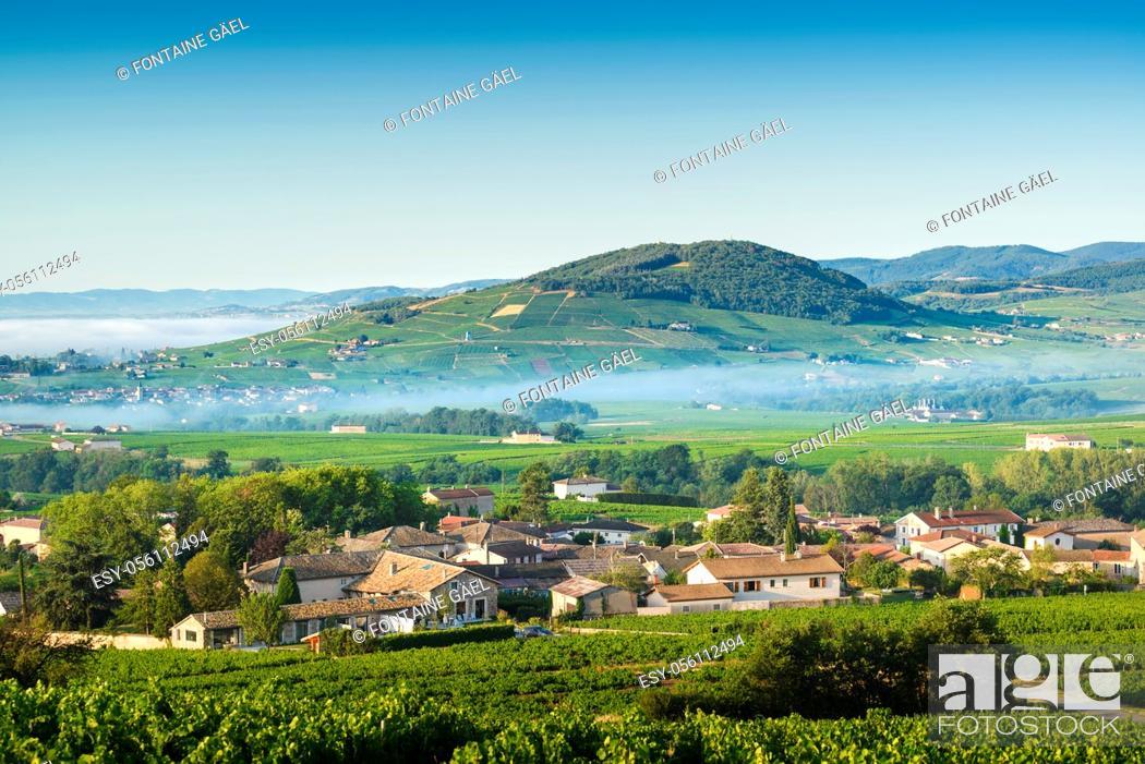Stock Photo: Le Mont Brouilly, et les villages de Cercié et Morgon, Beaujolais, France.