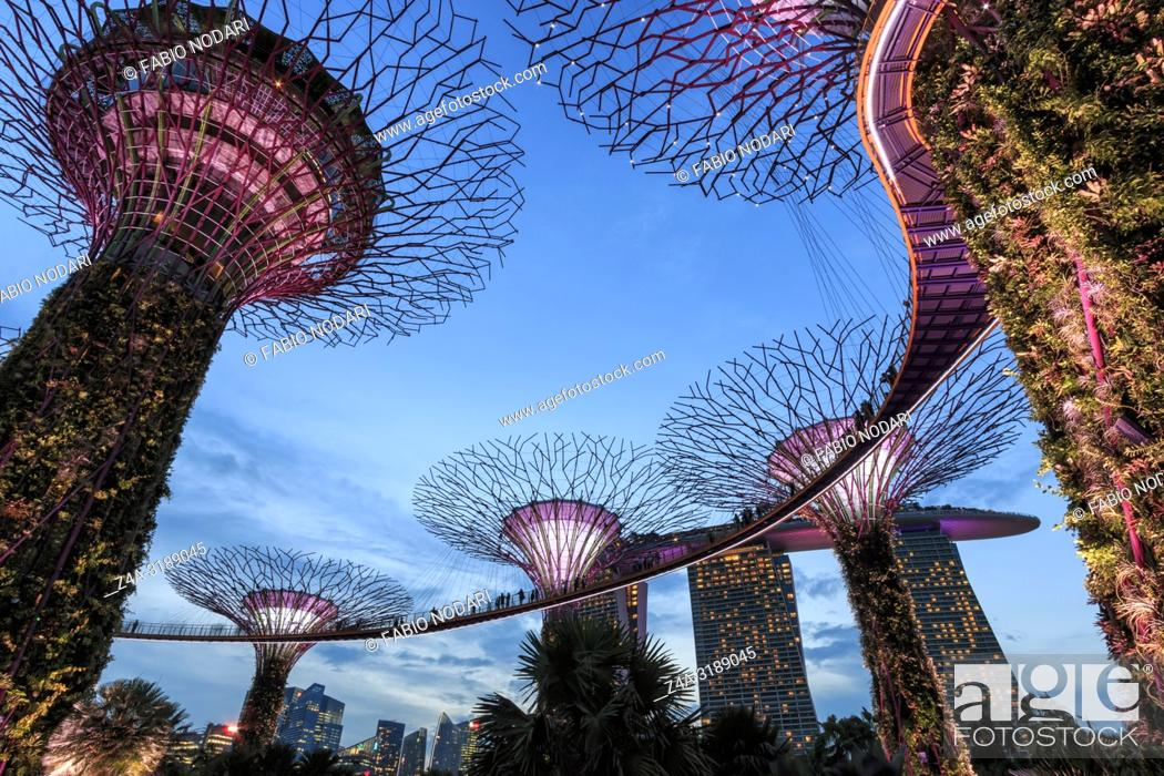 Stock Photo: Singapore, Singapore - October 16, 2018: Supetree Grove and Marina Bay Sands hotel at sunset in the Gardens by the Bay in Singapore.