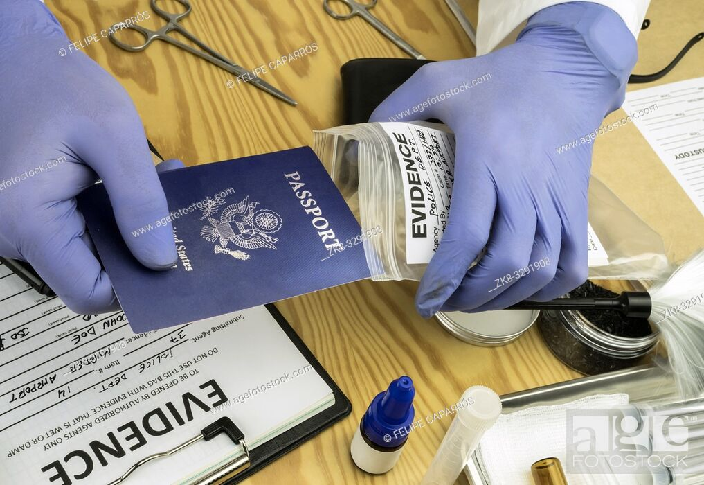 Stock Photo: Expert police officer examining American passport of a evidence bag in laboratory of criminology, conceptual image.