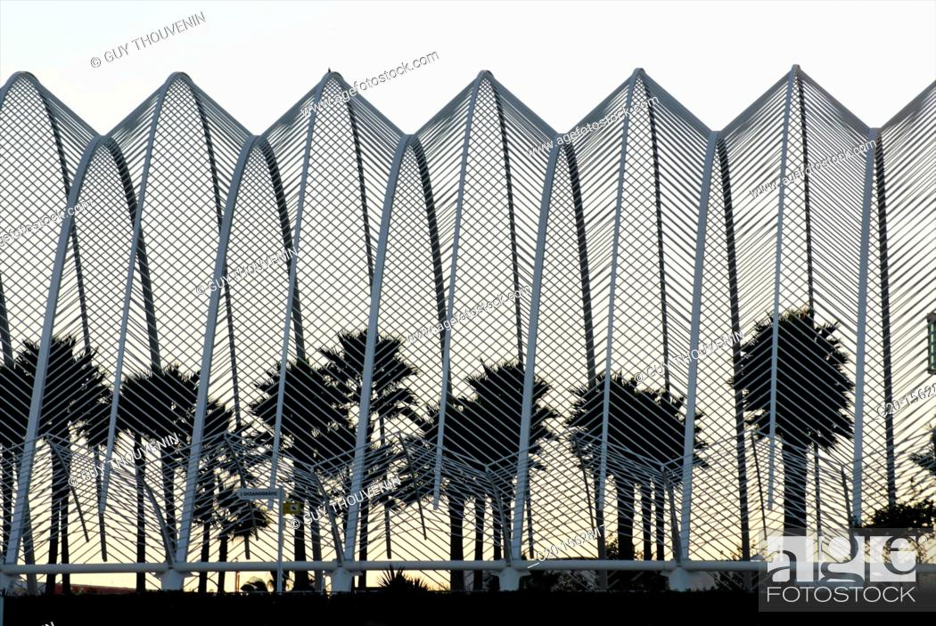 Stock Photo: umbracle science museum valencia spain.