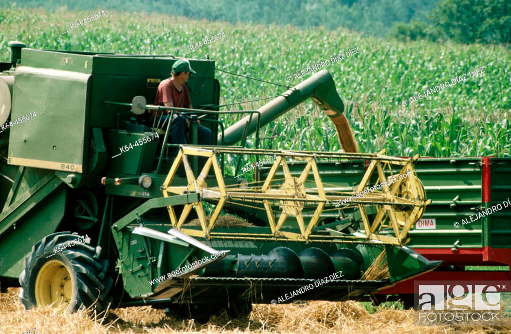 Stock Photo: Combine harvesting wheat. France.
