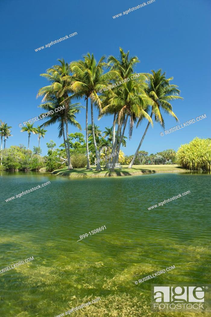 Palms Pandanus Lake Fairchild Tropical Botanic Garden Coral Gables ...