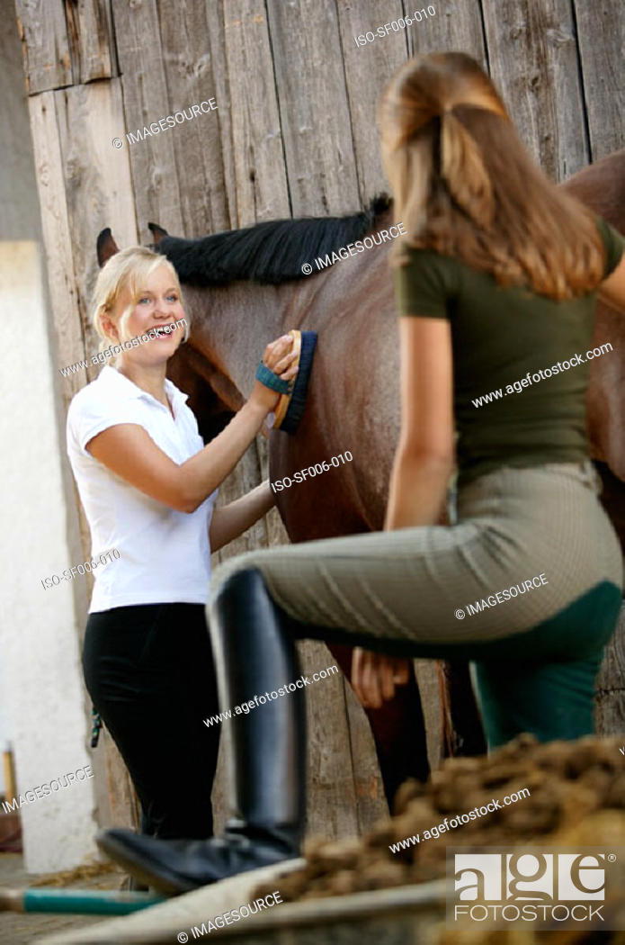 Stock Photo: Young women grooming horse.