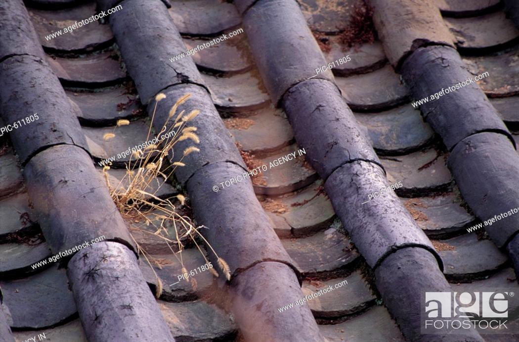 Stock Photo: Roof of Korean Traditional House, Korea.