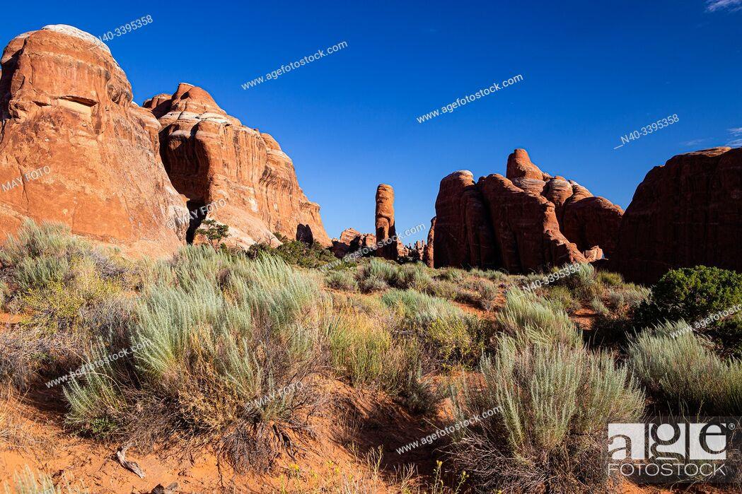 Stock Photo: Arches Nat. Park, Moab, Utah, United States.