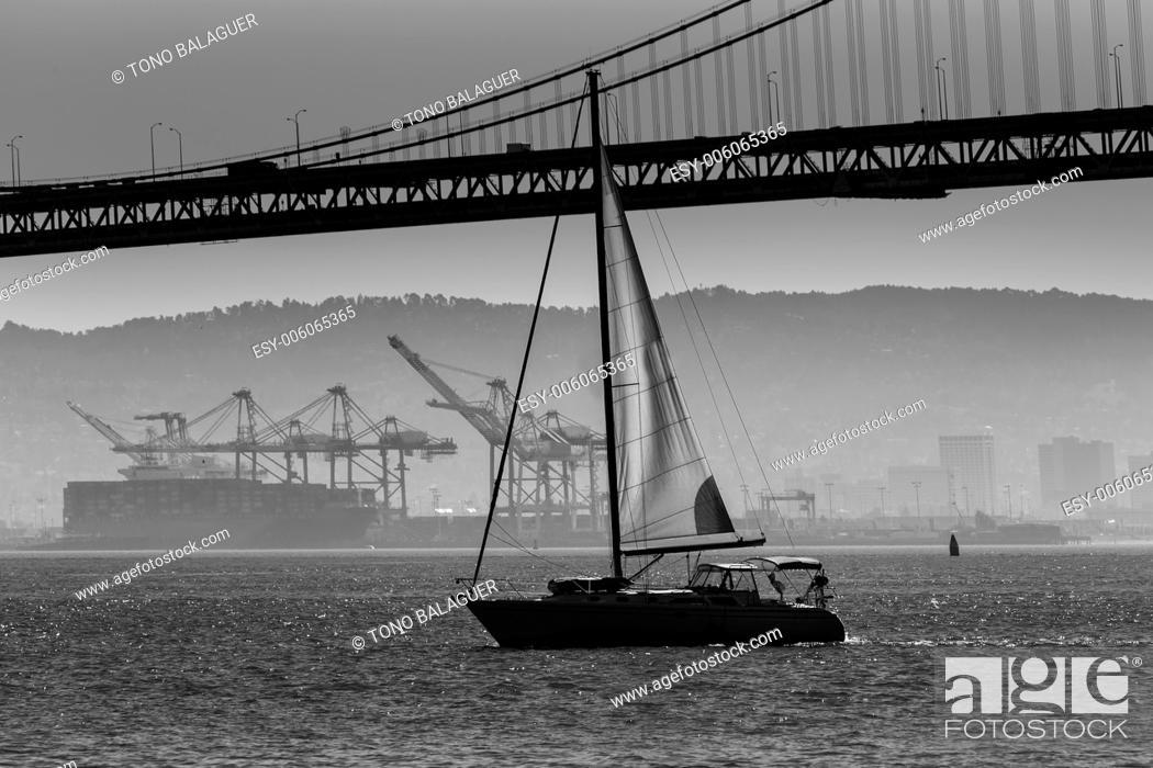 Stock Photo: San Francisco Bay bridge sailboat from Pier 7 in California USA.