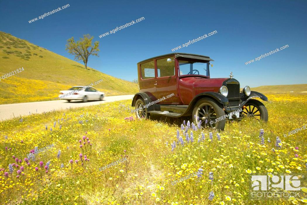 Stock Photo: A modern car driving by a maroon Model T parked alongside a scenic road surrounded by spring flowers, Route 58, Shell Road, CA.