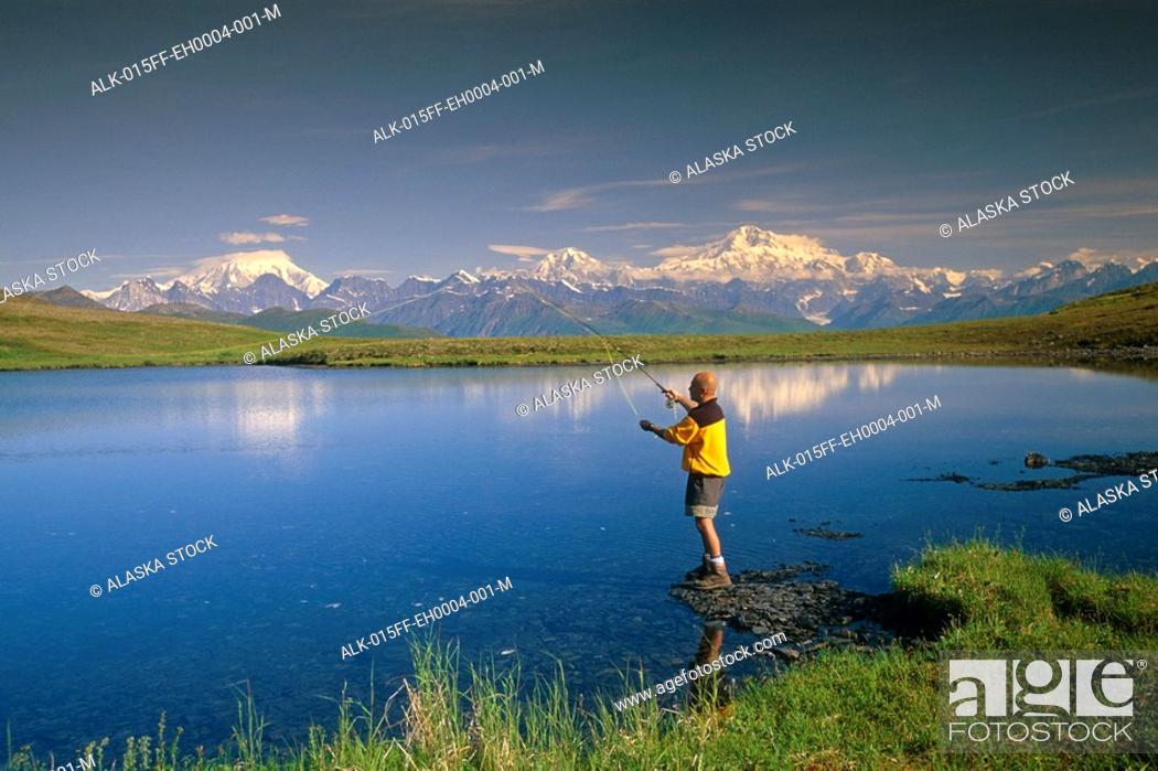Photo de stock: Hiker Flyfishing on Tundra Pond Denali SP SC AK Summer.