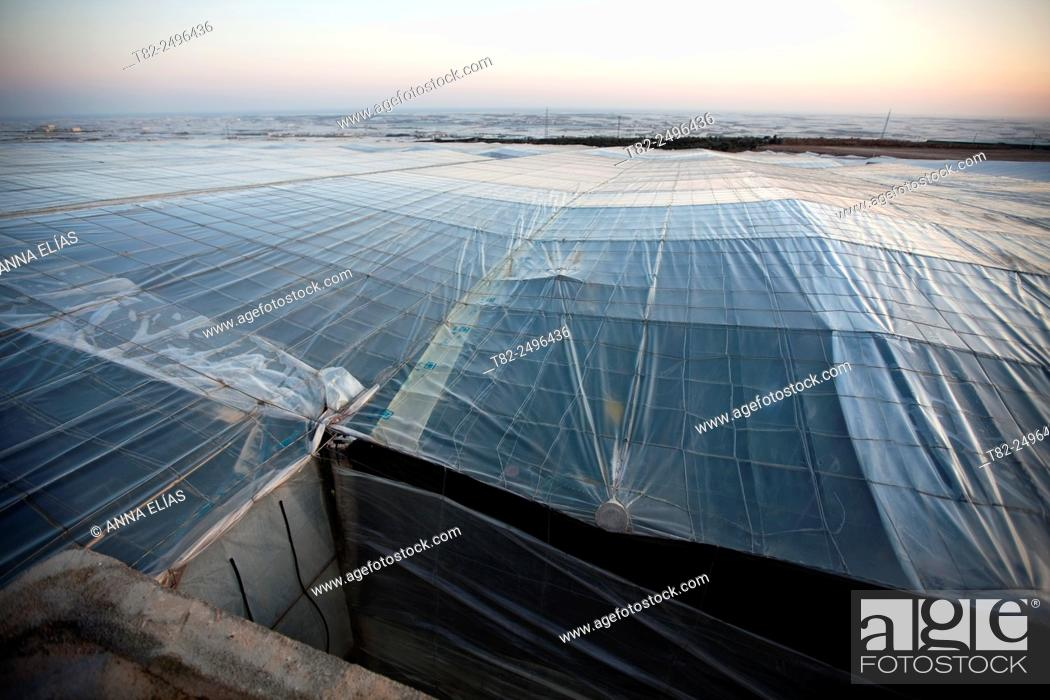 Stock Photo: greenhouses for vegetables and fruits in El Ejido, Almeria, Andalucia, Spain.
