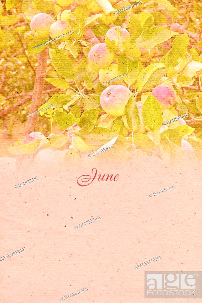 Stock Photo: Stylized vintage background with paper texture for calendar month. June. Raster illustration.