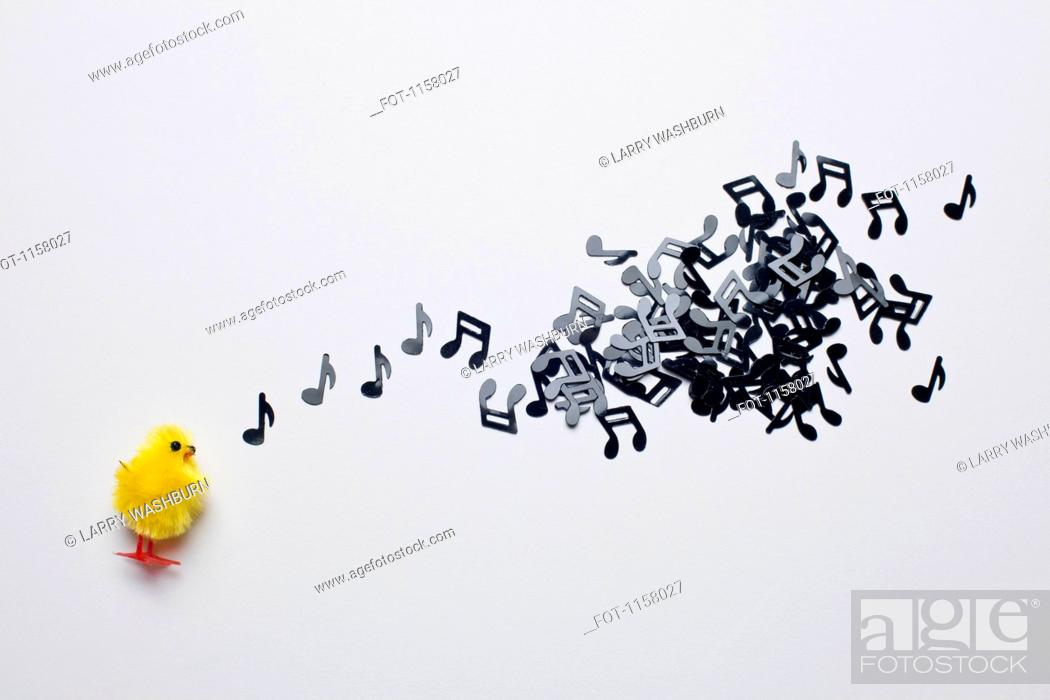 Stock Photo: A toy Easter chick next to a group of musical notes.