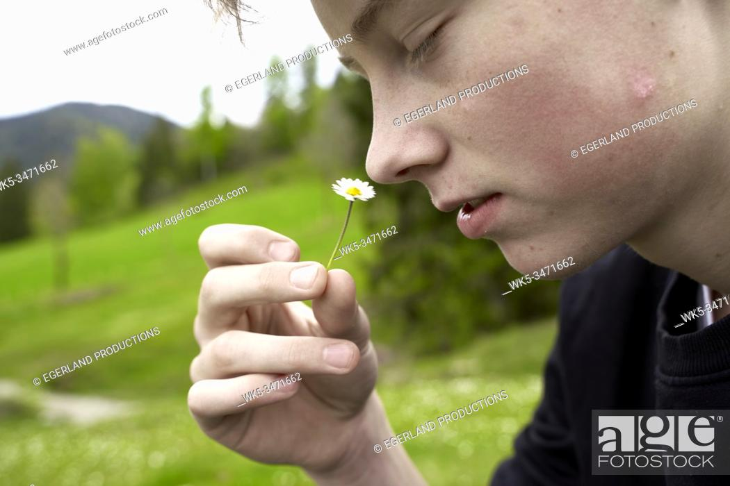 Stock Photo: Young boy in countryside, smelling flower. Bad Tölz, Upper bavaria, Germany.