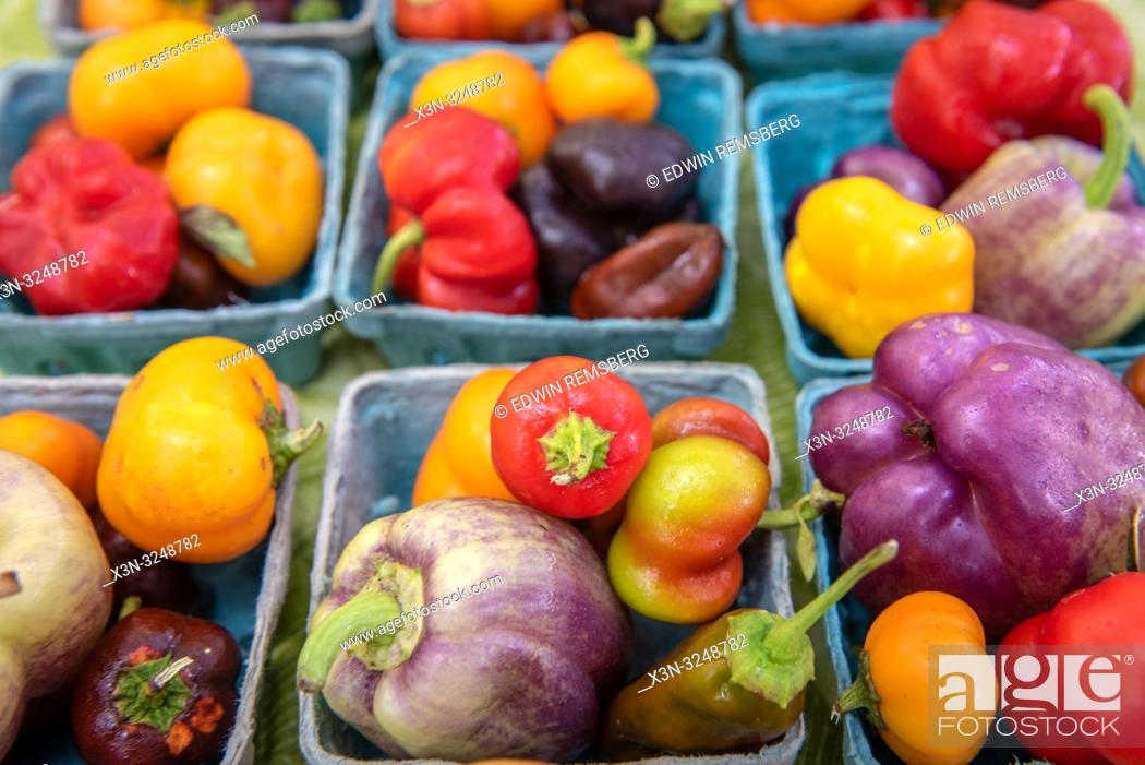 Imagen: Close-up of cartons full of a variety of colorful peppers for sale at farmers' market, Rehoboth Beach, Delaware.