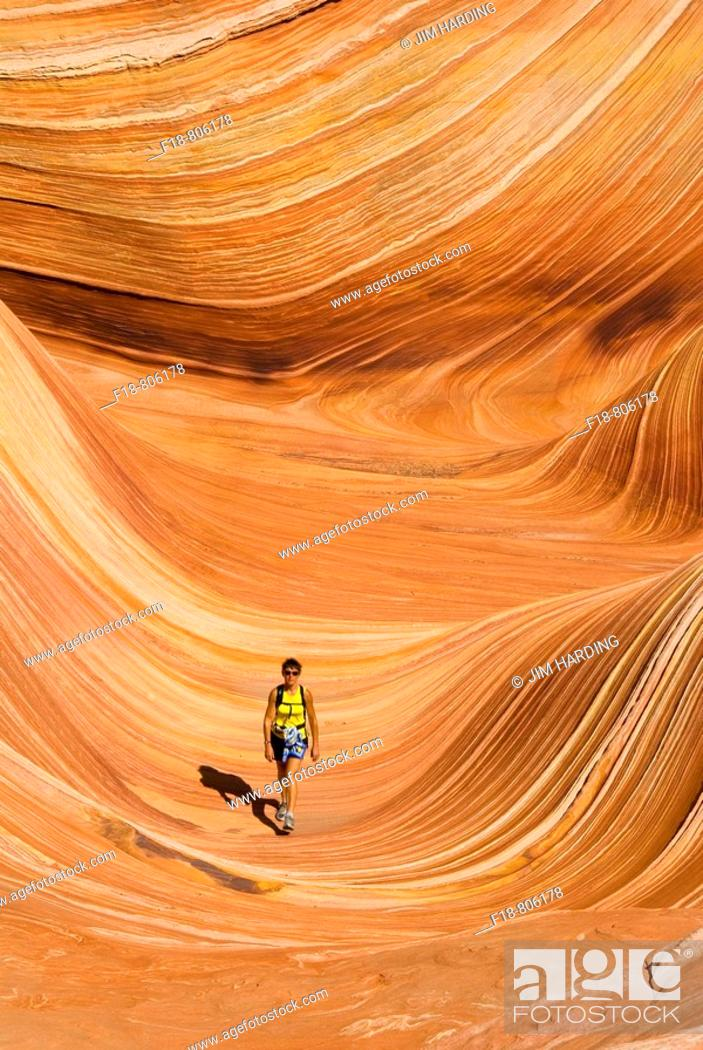 Stock Photo: woman walking through a rock formation known as 'The Wave', North Coyote Buttes,Vermillion Cliffs, Paria Wilderness, Utah, USA.