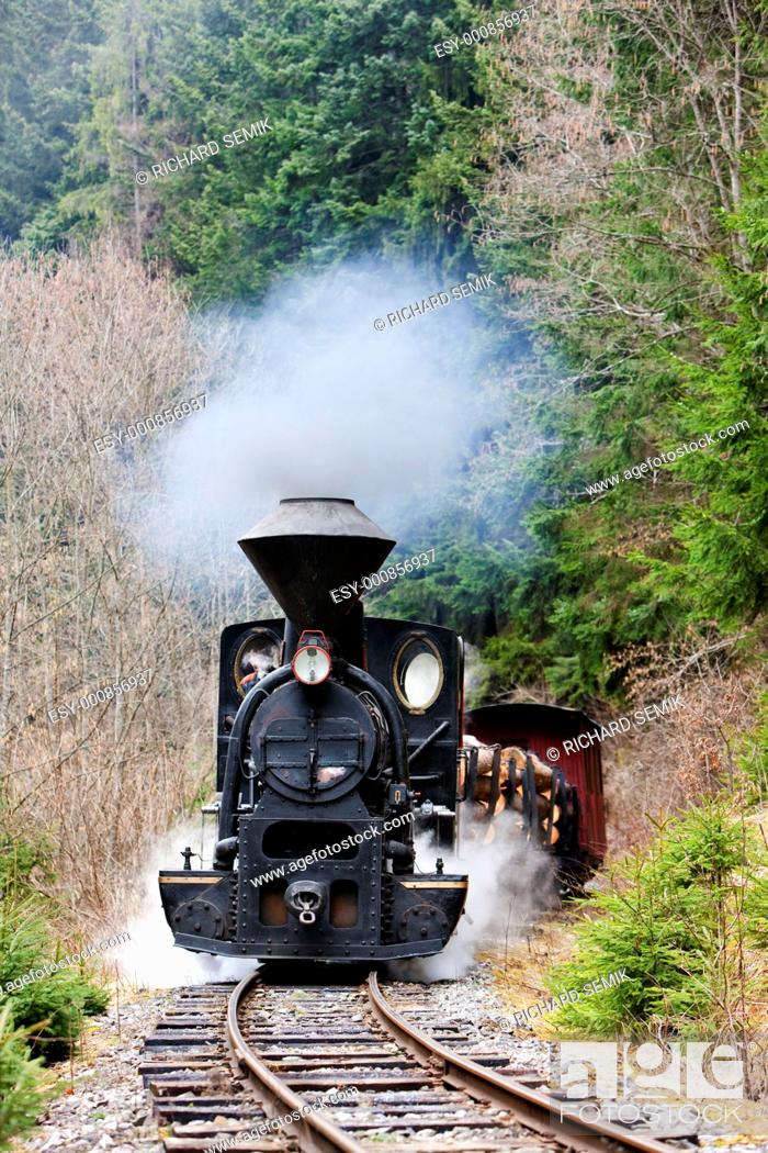Stock Photo: steam train, Ciernohronska Railway, Slovakia.