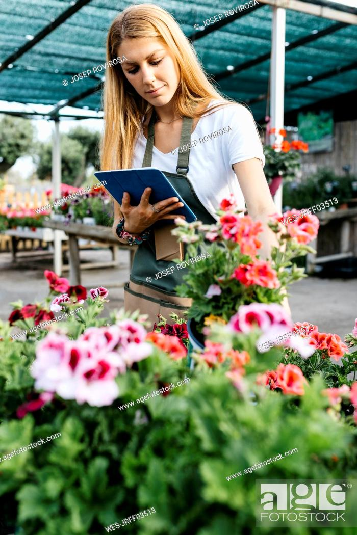Stock Photo: Female worker in a garden center with a tablet caring for flowers.