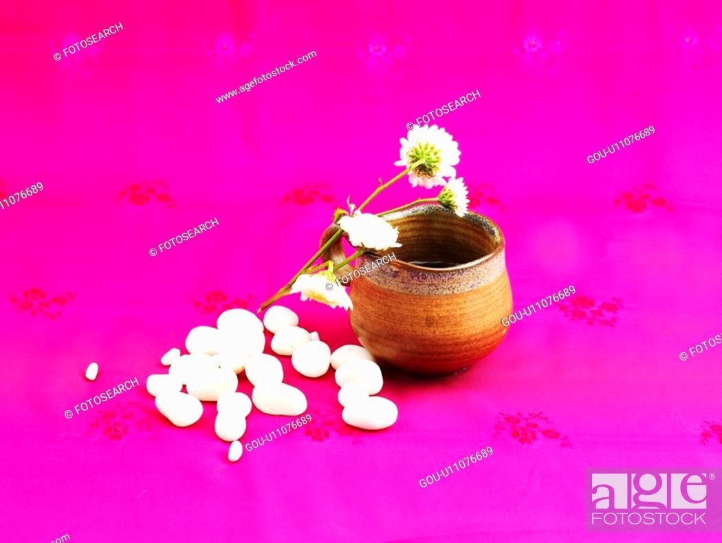 Stock Photo: cuisine, ceramic cup, food, pebble, flower, tea-things.