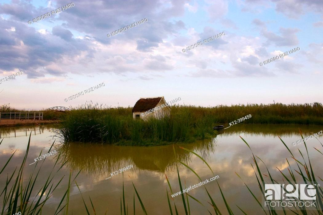 Stock Photo: Ebro River delta Natural Park. Tarragona province, Catalonia, Spain.
