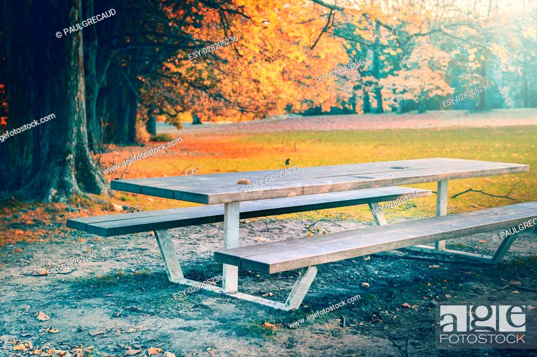 Stock Photo: Lonely picnic place in autumn park. Nature background.