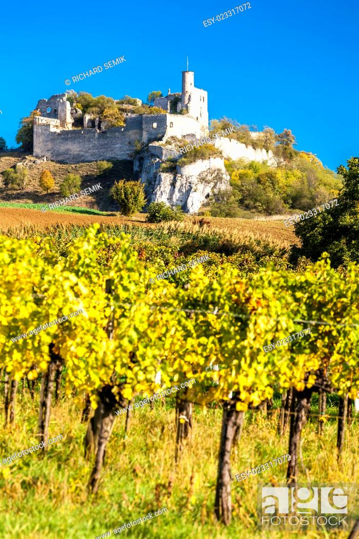Stock Photo: ruins of Falkenstein Castle with vineyard in autumn, Lower Austria, Austria.