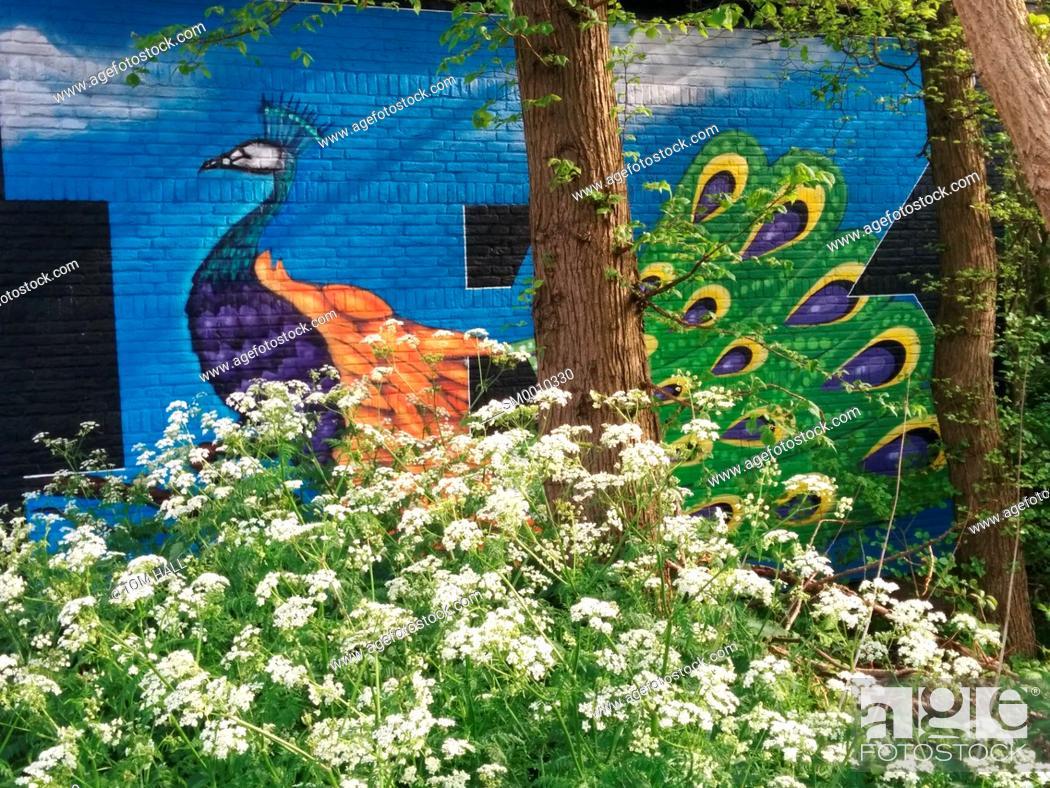 Stock Photo: Grafiti street art.