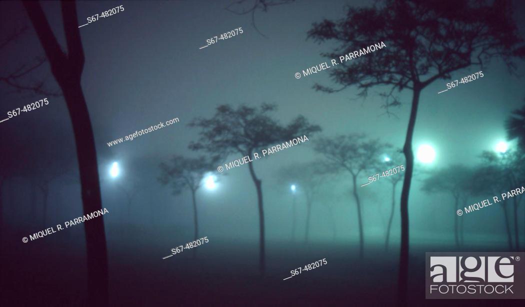 Stock Photo: Blurred trees in night fog. Park in front of Barceloneta beach. Barcelona. Catalonia. Spain.
