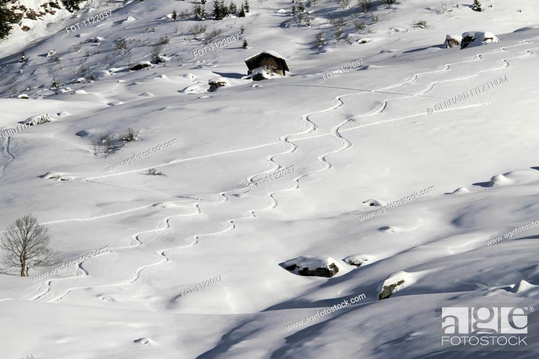 Stock Photo: Curvy ski tracks down hill.