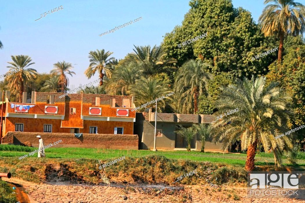 Stock Photo: Egypt: village.