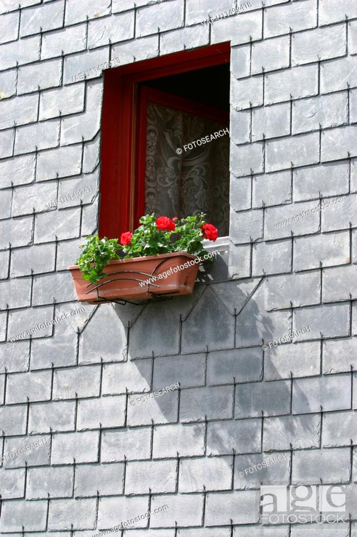 Stock Photo: Blooms, Blossoms, Brick, Brickwall, Building Exterior.