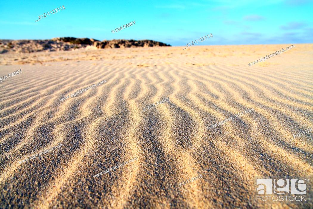 Stock Photo: Dunes in Illetas, a long sandy extension in the island of Formentera Baleares, Spain.