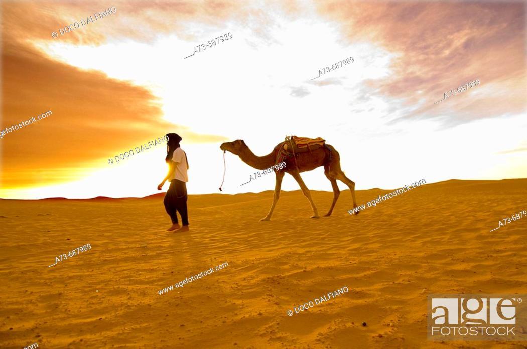 Stock Photo: The desert near Mhamid. Draa Valley. Morocco.