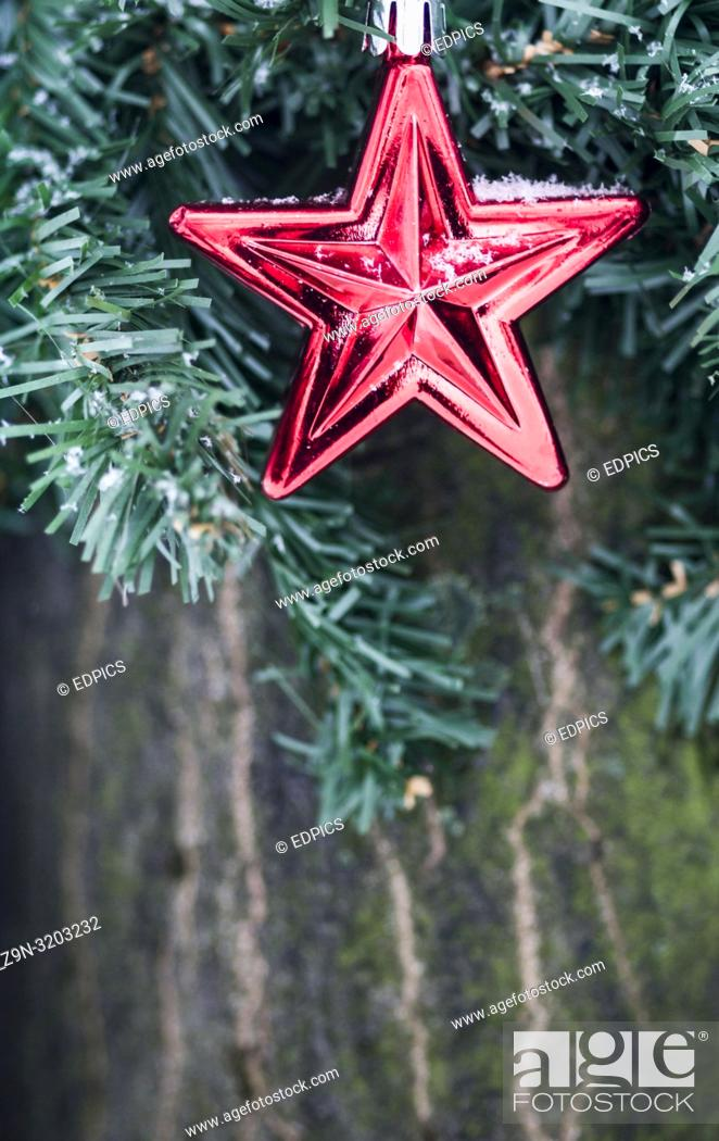 Stock Photo: frugal christmas decoration in form of a red star attached to a tree in a park, fine snow flakes, stuttgart, baden-wuerttemberg, germany.
