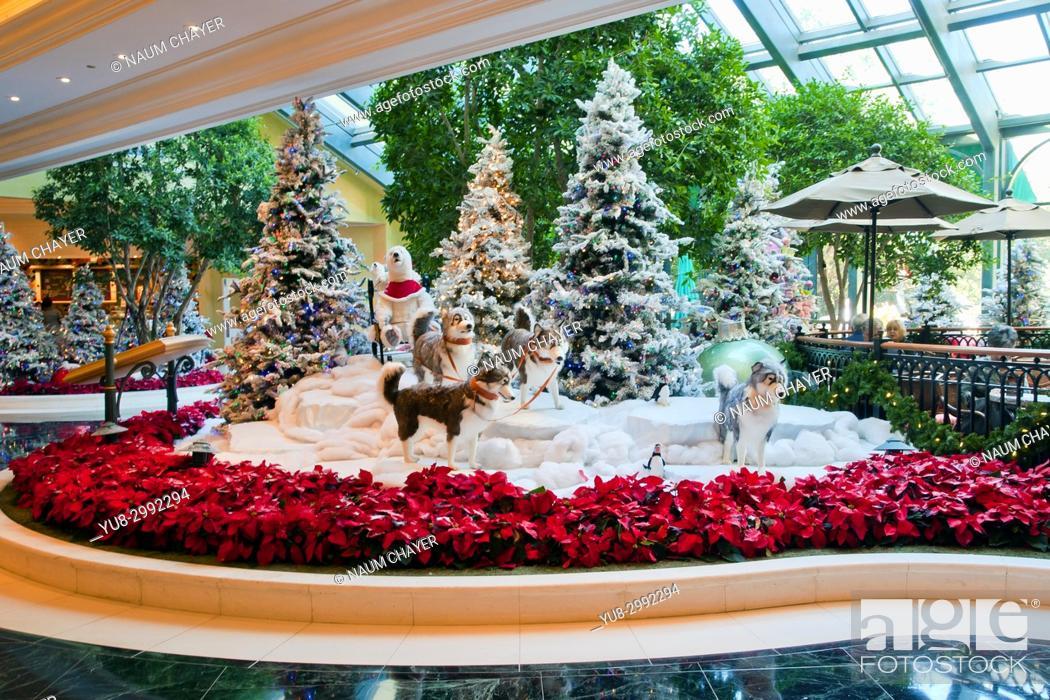 Stock Photo: Christmas decoration inside of famous Beau Rivage hotel, Biloxi, Mississippi.