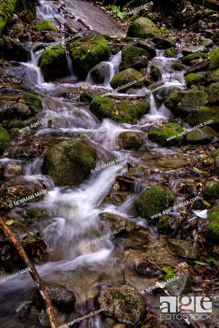 Stock Photo: mountain stream, bc, Canada.