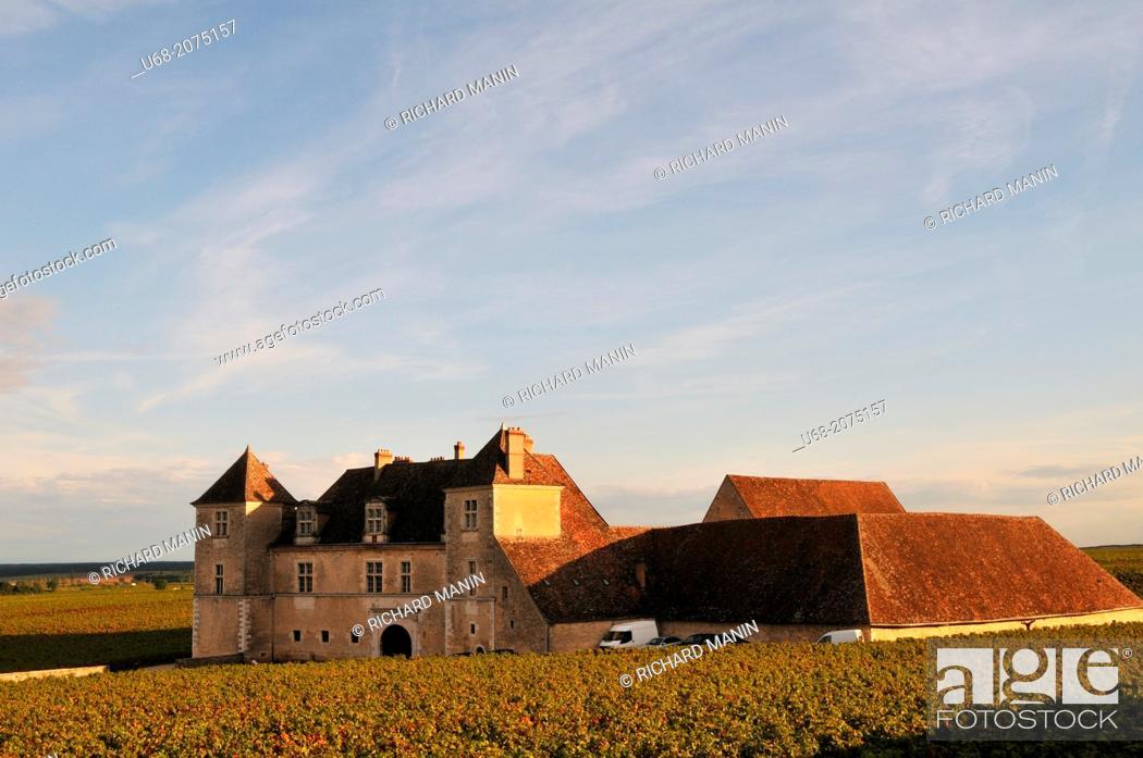 Stock Photo: Castle of Clos de Vougeot, vineyards of the Côte de Nuits, Vougeot, Côte d'Or, Burgundy, France.