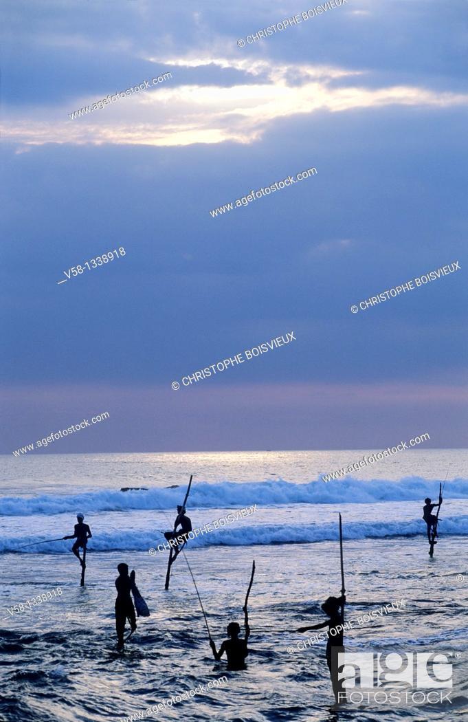 Stock Photo: Stilt fishermen at dusk, Weligama region, Sri Lanka.