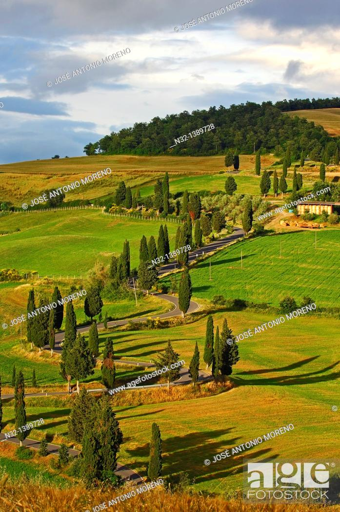 Stock Photo: Val d'Orcia, Orcia Valley, Pienza, Road and Cypress trees, Road from pienza to montepulciano, Tuscany Landscape, UNESCO world heritage site, Siena Province.
