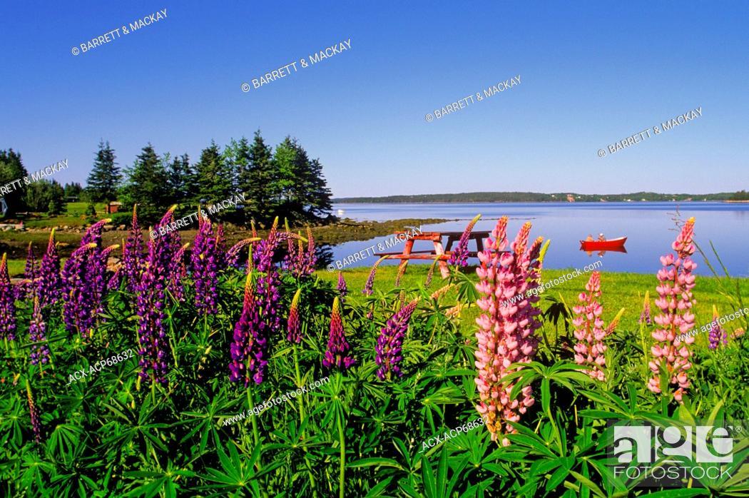 Oyster Pond, Eastern Shore, Nova Scotia, Canada, Stock Photo