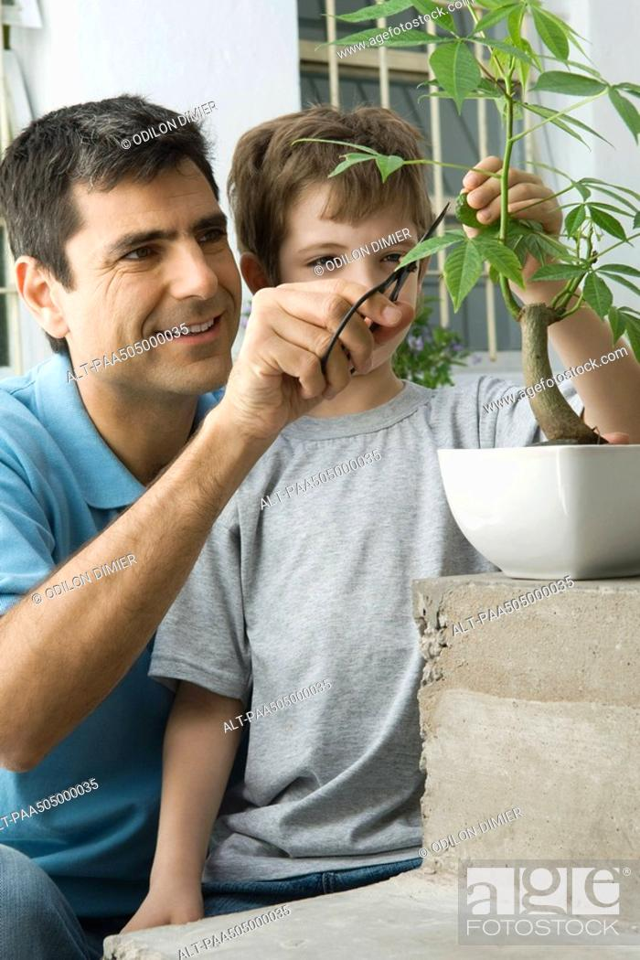 Stock Photo: Father and son pruning plant together, smiling.