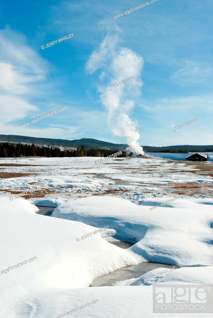 Stock Photo: Old Faithful Geyser, Yellowstone NP, WY.