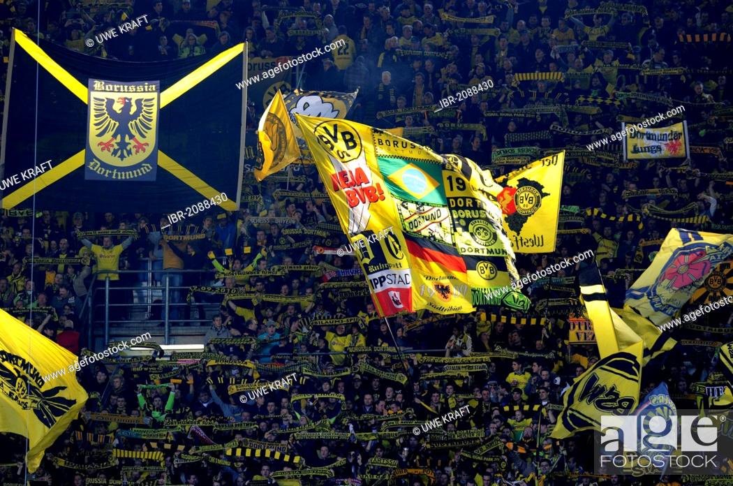 Bvb Fans With Flags In The South Bank Bundesliga Federal League Borussia Dortmund 1 Stock Photo Picture And Rights Managed Image Pic Ibr 2088430 Agefotostock