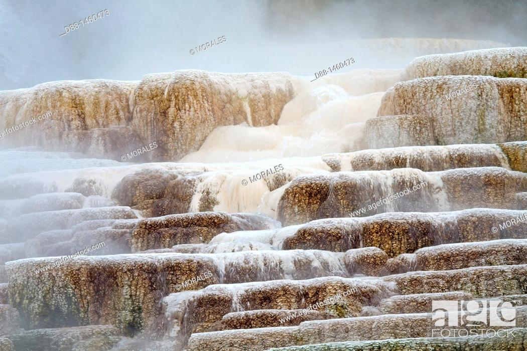 Stock Photo: Palette spring, Mammoth hot springs area, Yellowstone National Park, Wyoming-Montana, USA.
